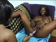Fat titty black lesbians have some good sex tubes