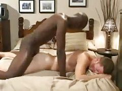 Free Gay Videos