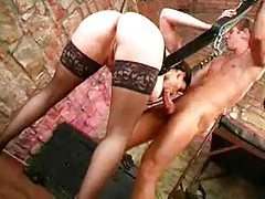 Chick in a sex swing having fun tubes