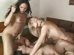 Two shemales and one man doing a threesome tubes