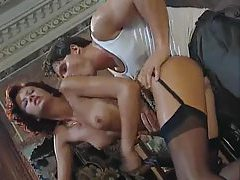 Elegant Euro gal loves the anal sex tubes