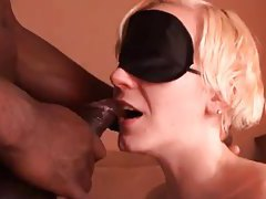 Blindfolded white girl sucks hot black cock tubes