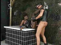 Deepthroating black chick and hardcore fuck tubes