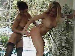 Amber Michaels in a lesbian dildo scene tubes