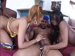 All black foursome with big cocks working tubes