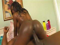 Black guy slams an oiled up black girl in her ass tubes