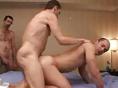 Gay gangbang with great anal fucking tubes