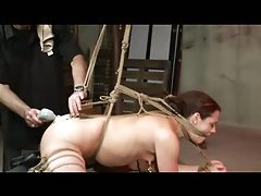 Tied Whipped And Toyed tubes