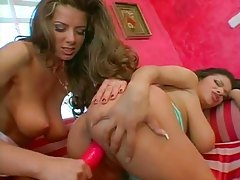 Two shaved pussies on curvy Euro girls and use toys tubes