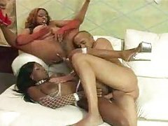 Black women in fishnets fucked by his big cock tubes