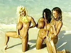 Retro big tits chicks on the beach tubes
