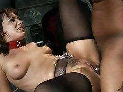 Dana DeArmond hardcore anal with BBC tubes