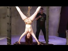 Tied Suspended Spanked and Toyed tubes