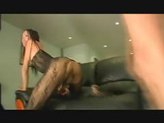 Smoking hot Latina tranny in sexy bodysuit getting ass fucked tubes