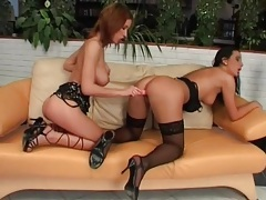 Hard fast fucking of dildos into lesbian pussies tubes
