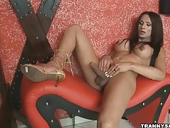 Big breasted latina tranny tugging on her hard cock tubes