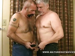 Muscular mature hunk fuck his buddy tubes