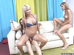 Three sexy shemale babes having some hot group sex tubes
