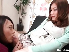 Japanese shemales suck dick in naughty porn tubes