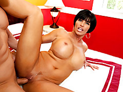 Cock plunging into horny slut tubes