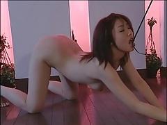 Mistress in latex dominates japanese girl tubes