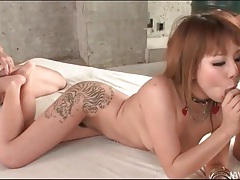 Tattooed cutie in collar fucked in wet pussy tubes