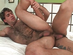 Hairy bear bottom bent over and fucked tubes