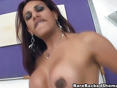 Big tits shemale slut gets bareback fucked tubes