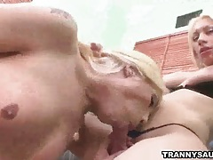 Three sexy shemale pornstars have some group sex tubes