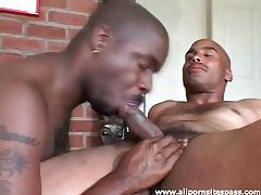 Both black guys suck cock in hot video tubes
