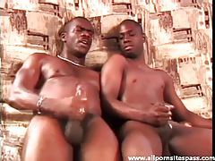 See slick black cocks cum after ass plowing tubes