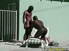Black gay studs suck fuck and cummed tubes
