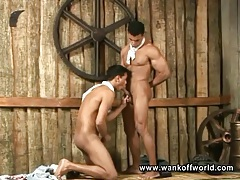Hard bodies on two cocksucking latin guys tubes