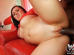 Sexy white girl fucked hard by black cock tubes