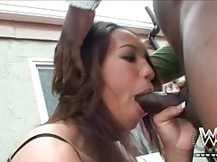 Pretty girl brook williams swallows cock outdoors tubes