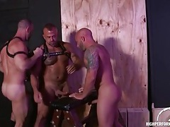 Bent over a bench and spit roasted by sexy bears tubes