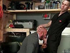 Bear in a business suit blows the repair guy tubes