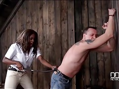 Slave beaten in the bar by his mistress tubes