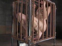 Two girls crammed into a tight cage tubes