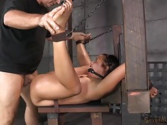 Slut strapped down in the dungeon and butt fucked tubes