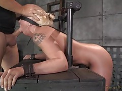 Blindfolded girl gags on his dick and gets laid tubes