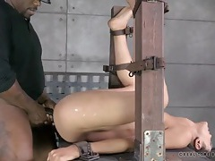 Living sex toy is bound and fucked by two guys tubes