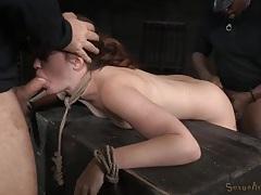 Pornstar jodi taylor gets fucked in rope bondage tubes